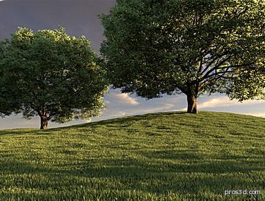 مقبس Autograss لعمل الاعشاب الواقعية